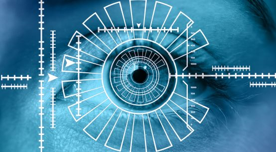 Iris vs retina