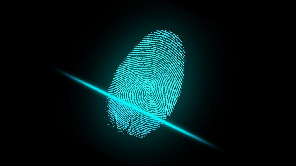 Types of Fingerprints