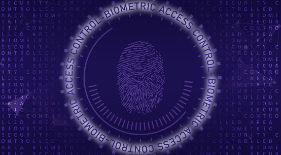 Biometric Authentication Process